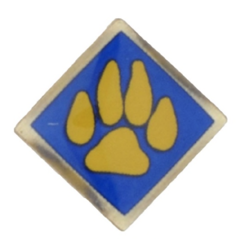Boy Scouts of America Recalls Cub Scout Activity Pins Due to Violation of the Federal Lead Content Ban