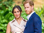 Meghan Markle guided Prince Harry on his public 'journey to wokeness'