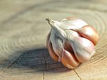 Scientists find way to ramp up flavour of the super-strength garlic or create less pungent versions