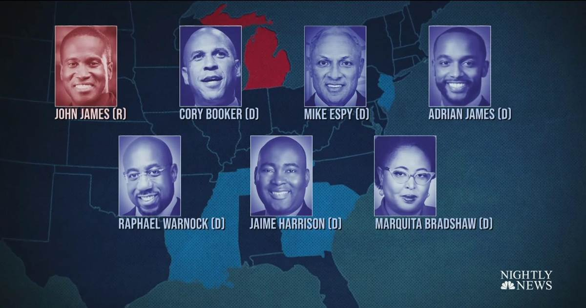 Seven Black candidates contending for Senate seats in historic election