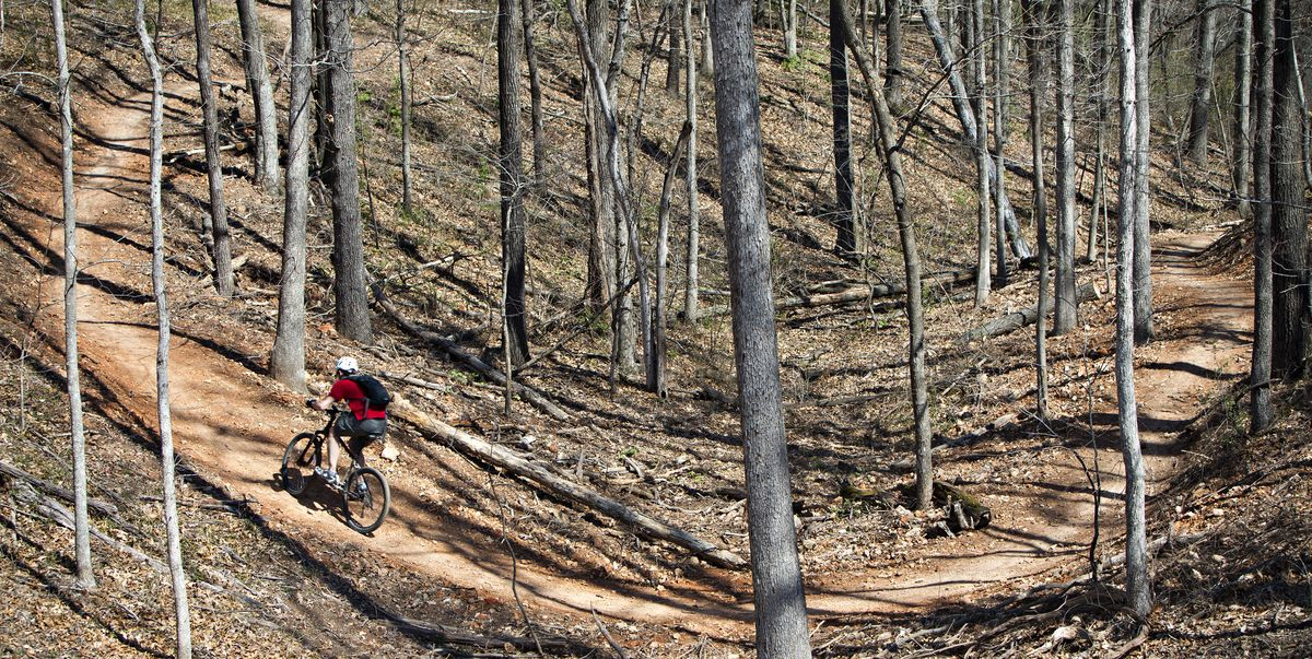Northwest Arkansas Is Offering You a Free Bike and $10,000 to Move There