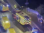 Body is found in River Lea in search for 'bike gang member'