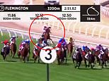 Melbourne Cup horse Anthony Van Dyck suffers leg injury