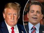 Donald Trump slams The Mooch as a loser who 'begged to come back' after his crash-and-burn 11 days