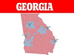 Georgia count: Biden takes the lead over trump with 917 votes