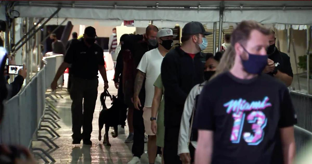 Miami Heat enlist Covid detecting dogs to screen fans