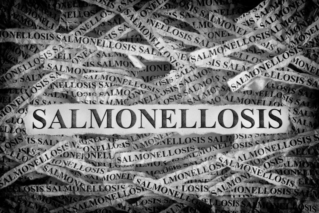 Study looks at USA outbreaks of foodborne Salmonella Enteritidis from 1990-2015
