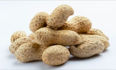 Peanut Sublingual Immunotherapy Feasible and Effective in Toddlers