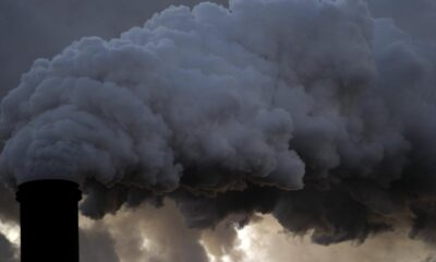 What is the social cost of carbon?