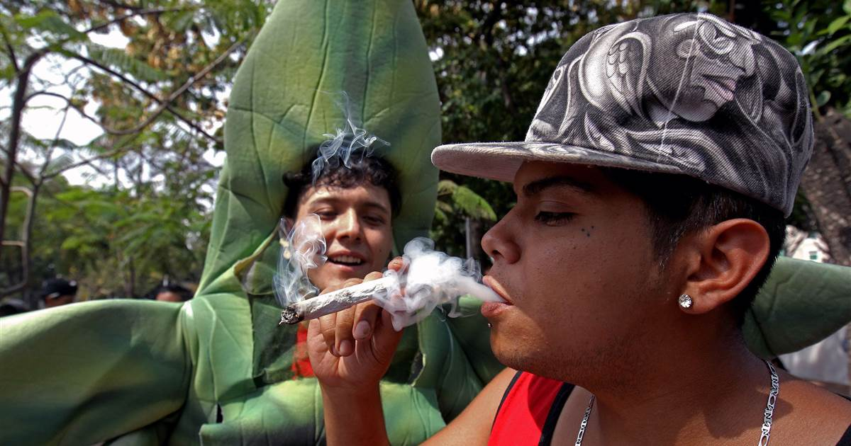 Mexico moves closer to becoming the world's largest legal cannabis market
