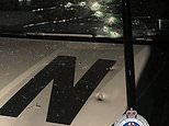 Man arrested after allegedly spraying homes and a police car with bullets in Dunoon NSW