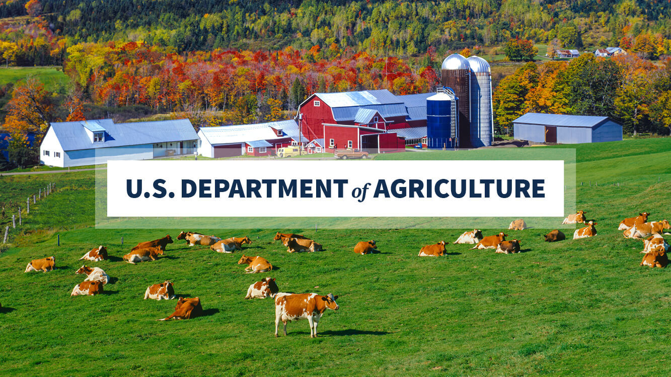 USDA Invests $28 Million in New Projects to Help Restore Lost Wetland Functions, Benefits on Agricultural Landscapes