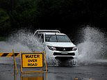 Torrential rain to last for days due to colliding weather systems amid NSW flood disaster