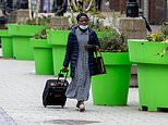 Council is blasted for blowing taxpayers' cash on 'Super Mario Brothers' green plant pots