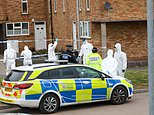 Good Samaritan in his 30s is stabbed to death as police arrest five children aged 13 to 16