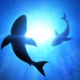 Scientists Can't Explain a Mass Shark Extinction That Happened 19 Million Years Ago