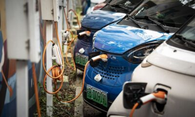 China's Hot EV and Solar Stocks Have More Room to Run, Funds Say