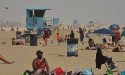 Experts: Use of sunscreens can halve skin cancer risk