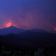 Four dead from devastating Cyprus forest fire By Reuters