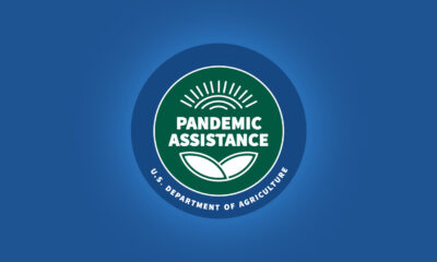 USDA Announces Pandemic Assistance for Timber Harvesters and Haulers