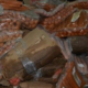 Crackdown results in seizure of 15,000 tons of illegal foodstuffs