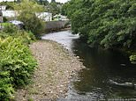 Boy, five, dies after being pulled from river in Wales in the early morning