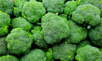 Dozens of broccoli products recalled because of Listeria risk