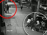 Four NYPD cops suspended after video shows them doing nothing as man shoots himself