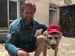 Taliban stop ex Royal Marine's rescue truck carrying 173 cats and dogs from reaching Kabul airport