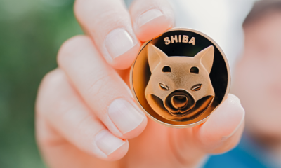Where to buy Shibance: WOOF extends gains with a 70% rise