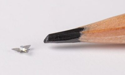 Winged microchip is smallest-ever human-made flying structure