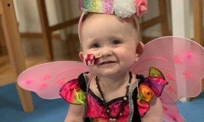 Toddler's incredible news after 70 rounds of chemo