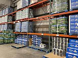 Costco and Walmart limit toilet paper as supply chain problems worsen