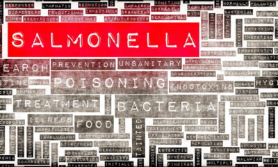 Study assesses Salmonella impact on consumers in Hungary