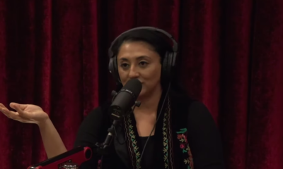 A Psychologist Tells Joe Rogan What Living With ADHD Is Really Like