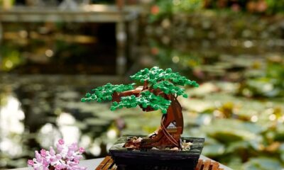 LEGO has a calming Bonsai Tree set for people who suck at plants